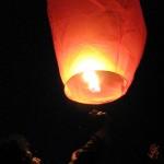 Un pack de lanterne thaïlandaise de mariage pour un événement réussi